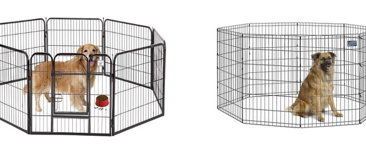 Best Portable Dog Fence 2019 Updated Mzuri Dogs